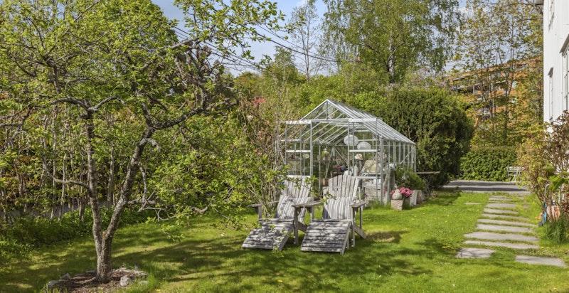 Stor og pent opparbeidet hage med diverse busker, planter og frukttrær.