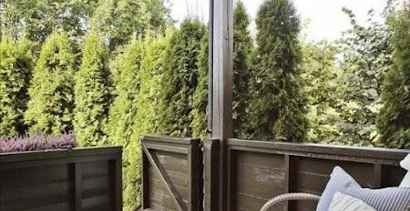 Nedgang til felles hage fra terrassen