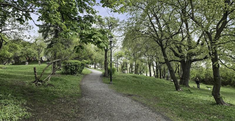 Hyggelige park- og turområder i umiddelbar nærhet