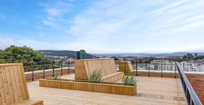 Felles takterrasse hvor sol og utsikt kan nytes.