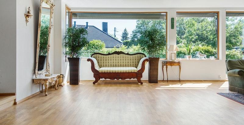 Utsnitt fra stuen med frodige, grønne omgivelser, samt utgang til terrasse/hage