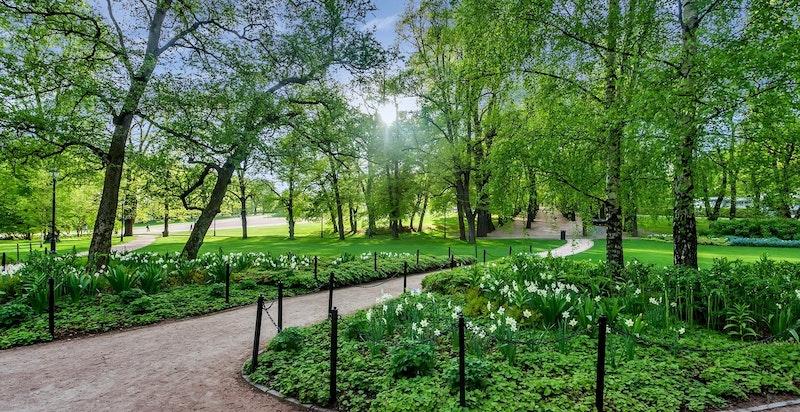 Slottsparken - kort gangavstand gjennom parken til sentrum