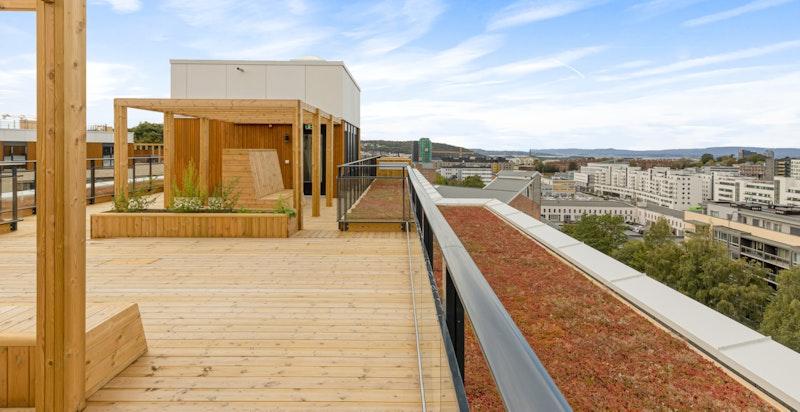 Beboerne disponerer felles takterrasser med vidstrakt utsikt og gode solforhold.