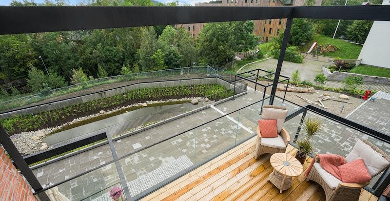 Utsikt mot grøntareal og vannspeil.