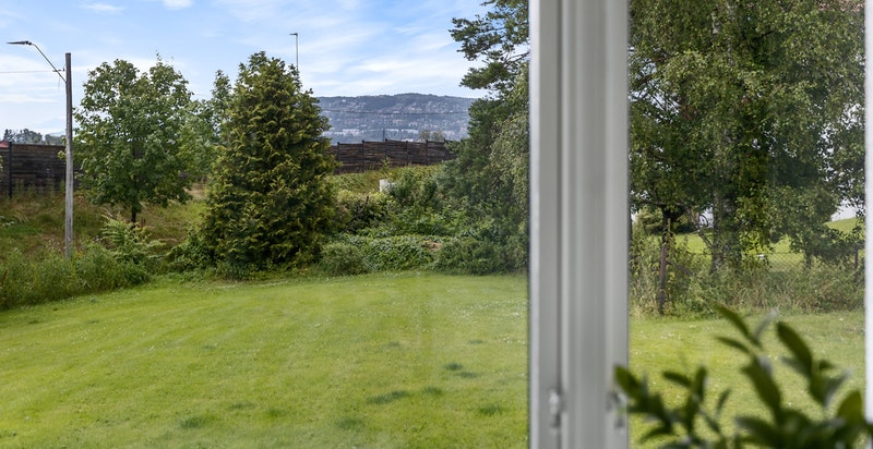 Utsikten fra kjøkkenvinduet