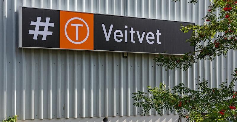Kort vei til Veitvet t-bane stasjon som tar deg raskt inn til sentrum. Kun ca. 15 min til Oslo S.