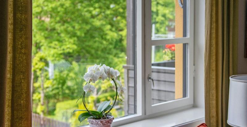 Den grønne utsikten fra stuevinduet
