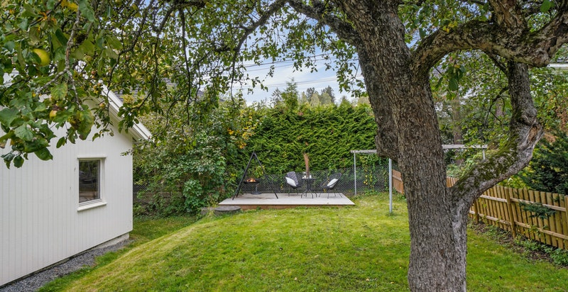 Hagen er opparbeidet med gressplen, frukttrær, bed og busker