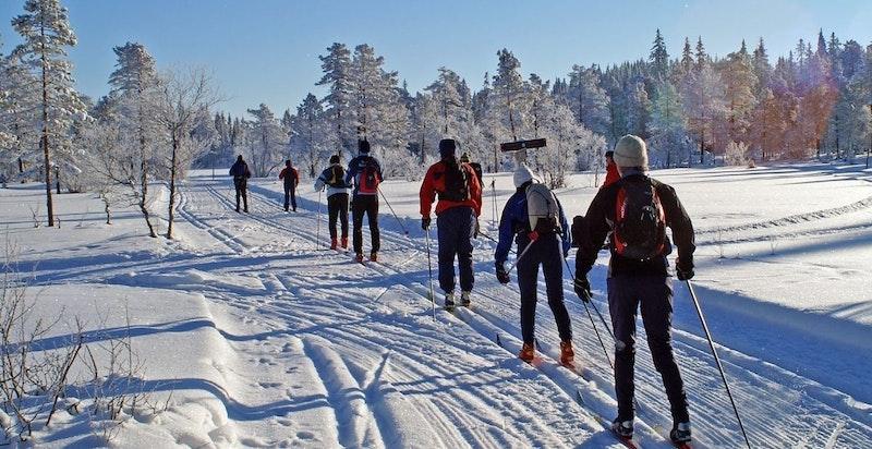 Kort vei til fantastiske nordmarka