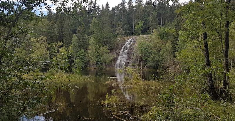 Båntjern ligger drøyt 2 km fra eiendommen, og er populært badested om sommeren.