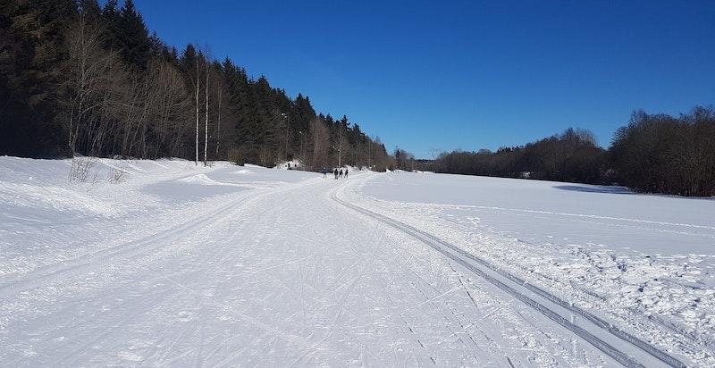 Etter en km kommer man til en bred trasé mot Sognsvann. Her kan man også starte turen ved å følge Jegerveien og Risbekkveien. Mange stier å velge i på sommerstid, bl.a. til Båntjern