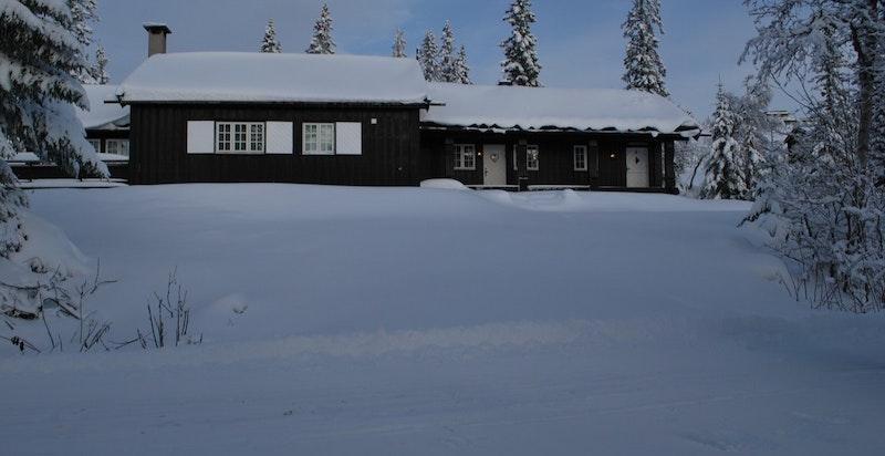 Fjellvåk Vinter 2019