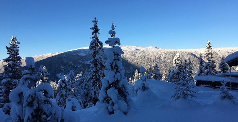 Vinterbilde fra hytta tatt av eier