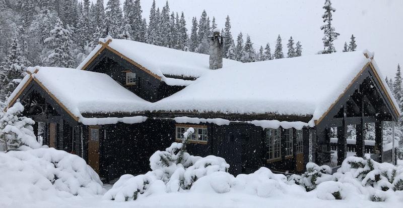 Bilde tatt ved hytta 16.11.2019. Usjenert lengst inn i blindvei.  God adkomst sommer som vinter.