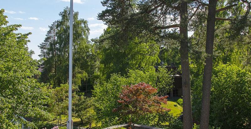 Vakker hage med flaggstang