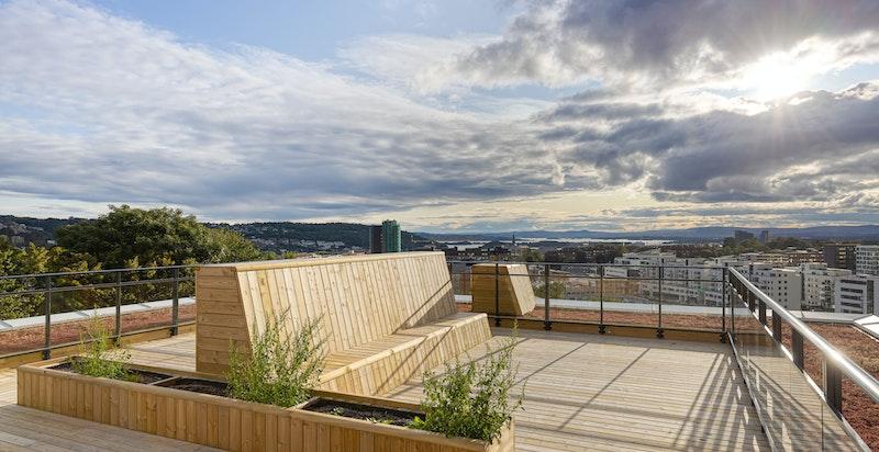 Felles takterrasse med flott utsikt og meget gode solforhold