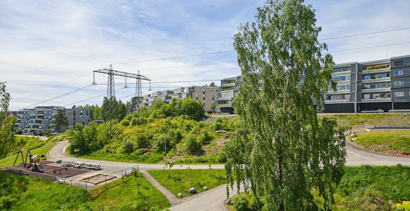 Store og flotte grøntområder omkranser bygningene