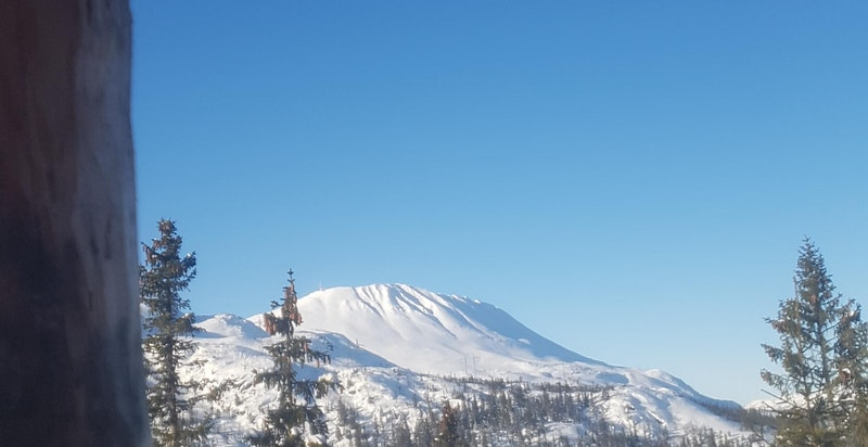 Selgers bilde, tatt fra hytteterrassen. Fantastisk utsikt!