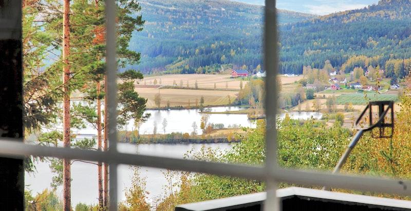 Fin utsikt fra stue og terrasse