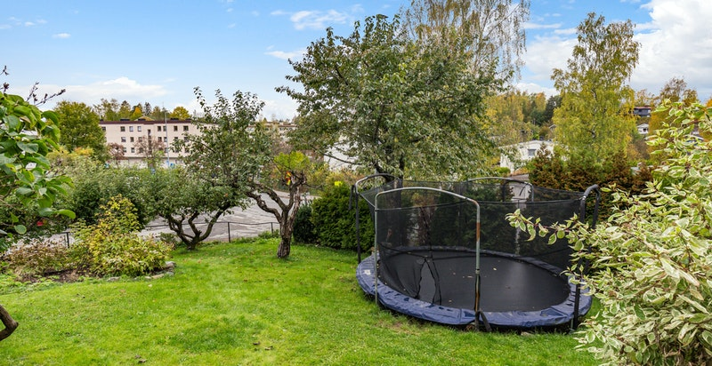 Barnevennlig hage med plass til trampoline