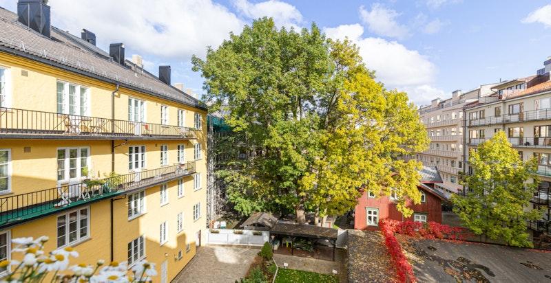 Utsikten fra balkongen, stuen og kjøkkenet.