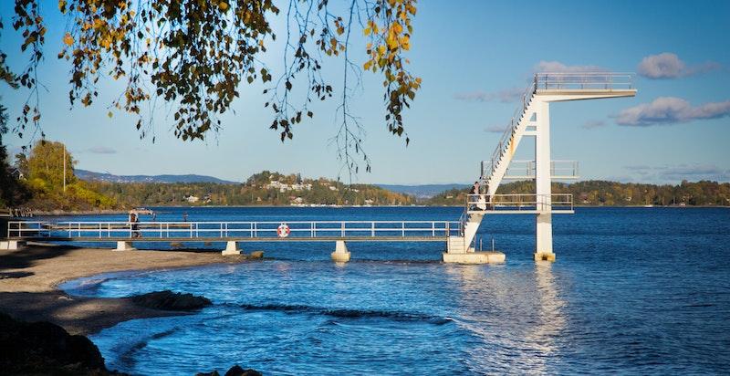 I nærområdet er badestrand kun noen minutter unna på sykkel (Holmenskjæret og Hvalstrand).