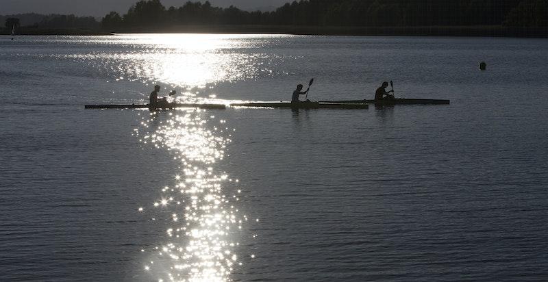 I nærområdet finnes gode muligheter for sjøsport.