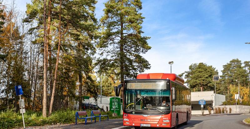 Godt kollektivtilbud med buss til sentrum og Grorud.