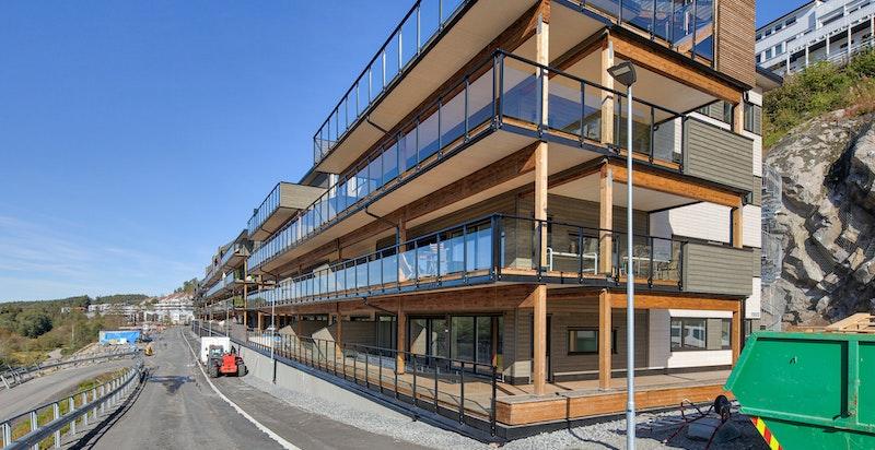 fasade01 (1)