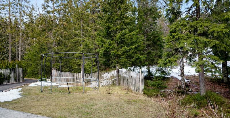 Hagen bak huset