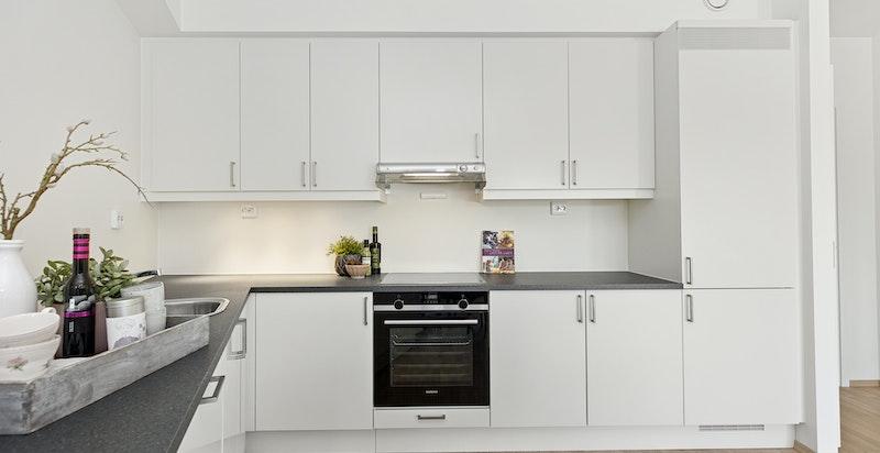Moderne kjøkken med integrerte hvitevarer
