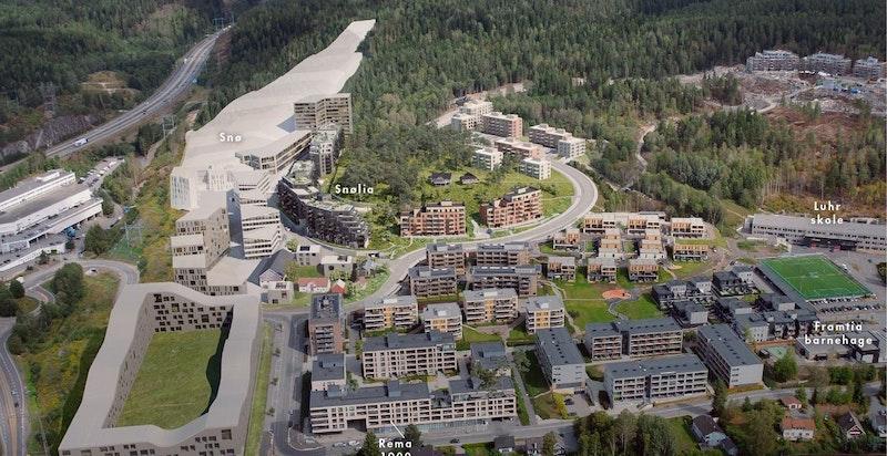 Oversiktsbilde Snølia - kunstnerisk illustrasjon