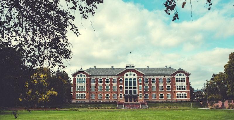 NMBU, Universitet i Ås, et samlingspunkt og yndet arbeidsplass i regionen.  Universitet bidrar til livet i Ås med studenter og forskere fra hele verden.
