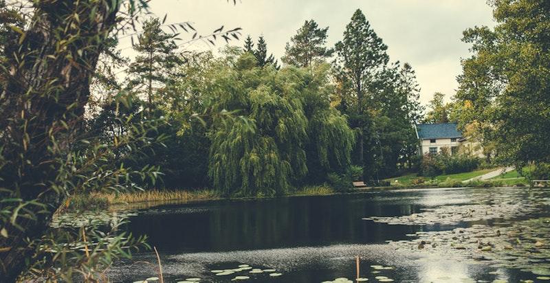 Idylliske og grønne omgivelser.