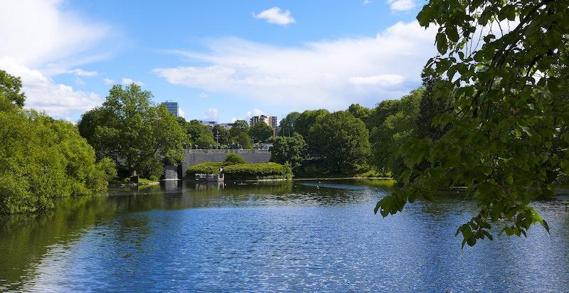 Parken har flere aktivitetstilbud, med bl.a. Frognerbadet, Frogner Stadion og serveringssteder.