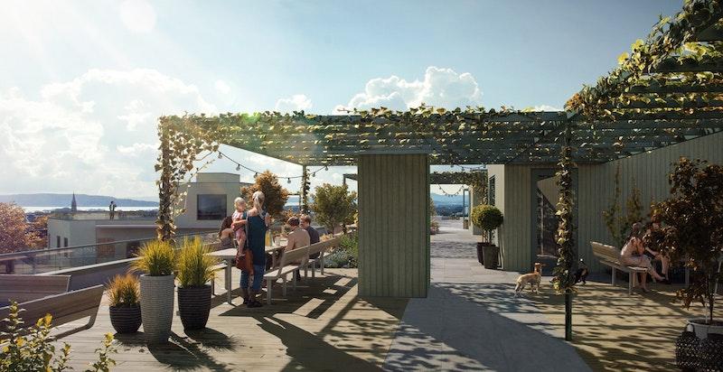 Stor felles takterrasse på toppen av bygningen med herlig utsikt og trivelige oppholdsarealer
