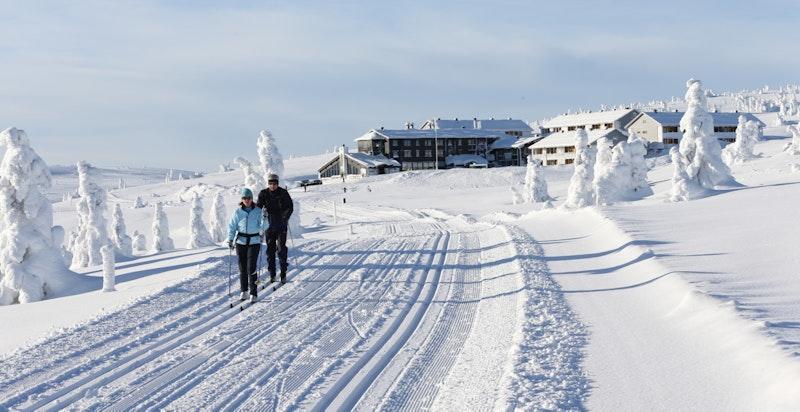 Løypenettet ut fra Pellestova gir deg enorme muligheter og fantastiske turer.