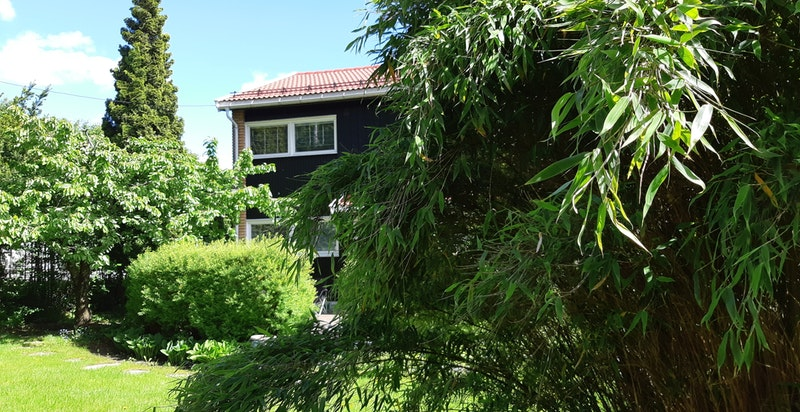 Hagen har prydbusker og stilfull beplantning.