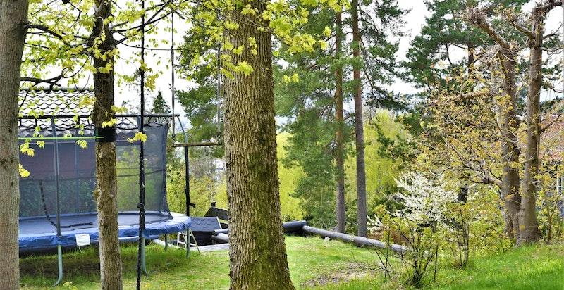 Tatt fra baksiden av huset - fin plass for trampoline mm