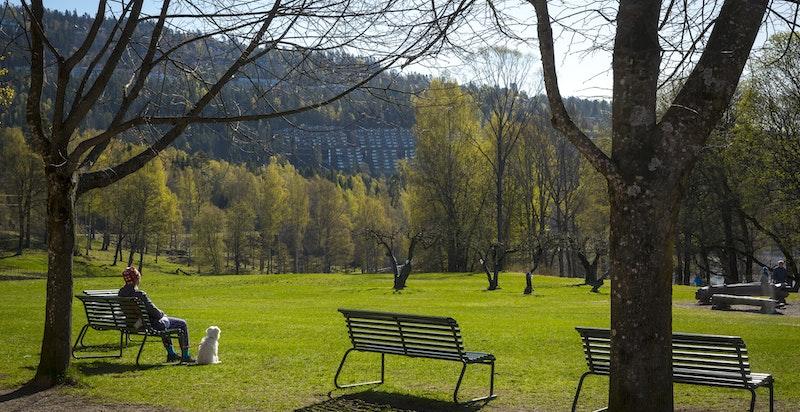 Det er flotte tur-/rekreasjonsmuligheter i nærområdet, både sommer og vinter.