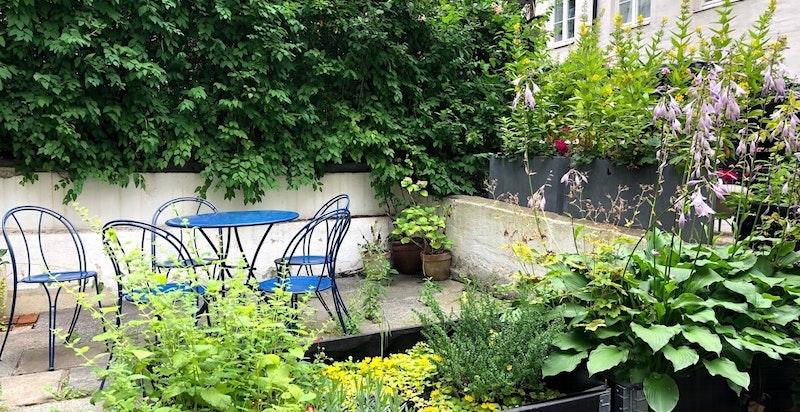 Sommerbilde av bakgården. Sol til ca. 15:30 sommerstid