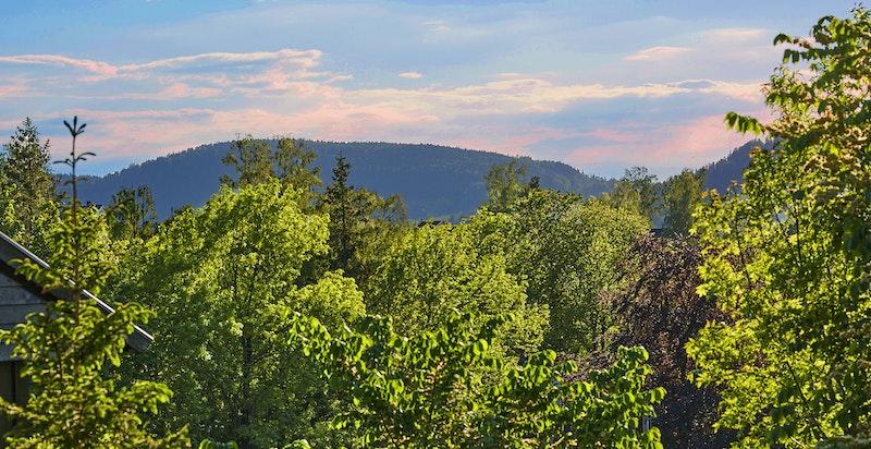 Utsikt fra hagen mot Lommedalen