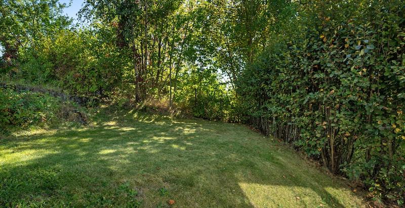 Hagen er pent opparbeidet med gressplen, trær, hekker og busker