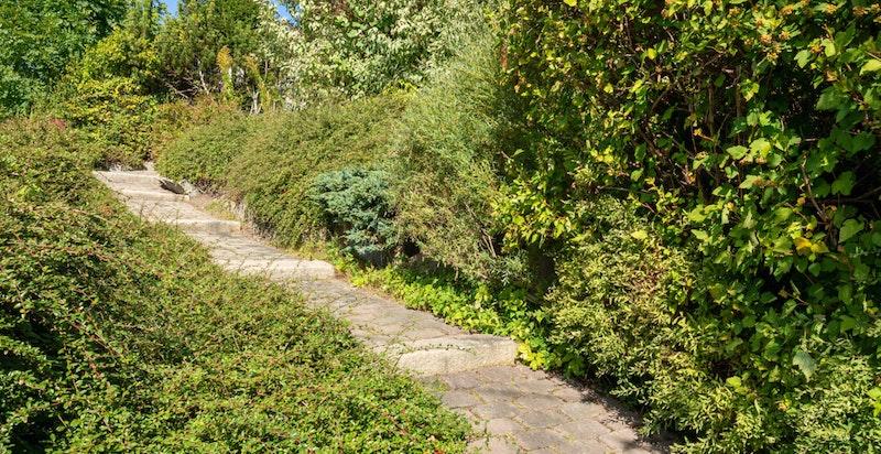 Stensatt adkomstvei opp til huset