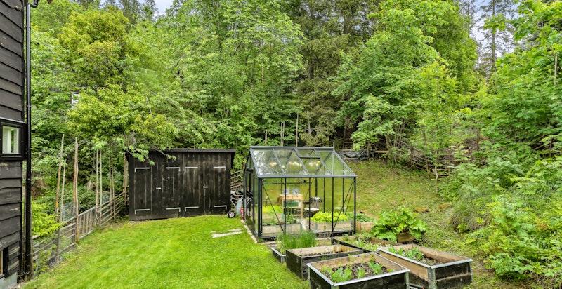 På tomten er det oppført et 9,8 kvm Juliana drivhus