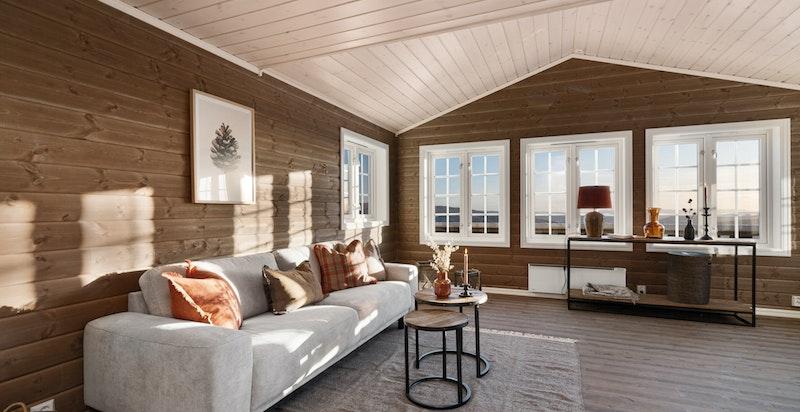 Store vindusflater slipper inn rikelig med naturlig lys