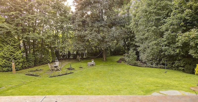Stor parkmessig opparbeidet hage med flotte trær og usjenerte solrike uteplasser