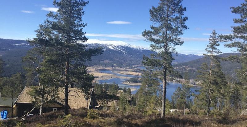 Stor og solrik tomt på Hovdekollen v/ Norefjell