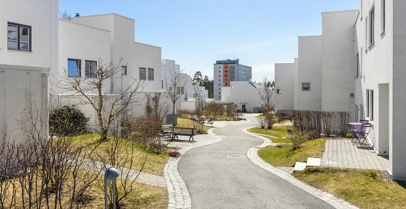 Voksenhagen er et særdeles hyggelig høystandard rekkehuskompleks på Vestre Holmen