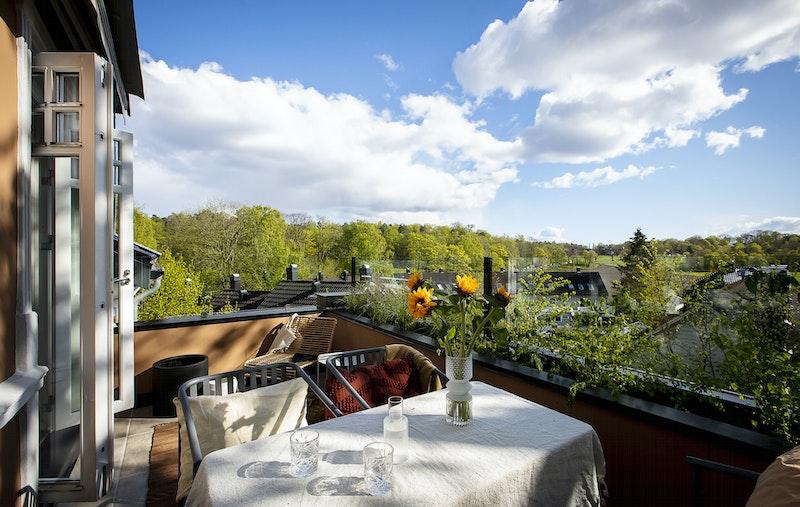 Syd-vestvendt og solfylt terrasse med utsikt over jordene til Kongsgården.